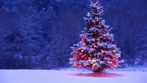 La Navidad existe